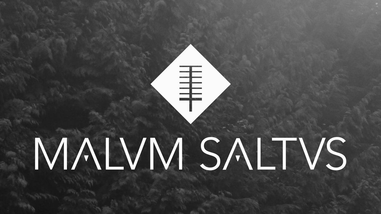 Malvm Saltvs