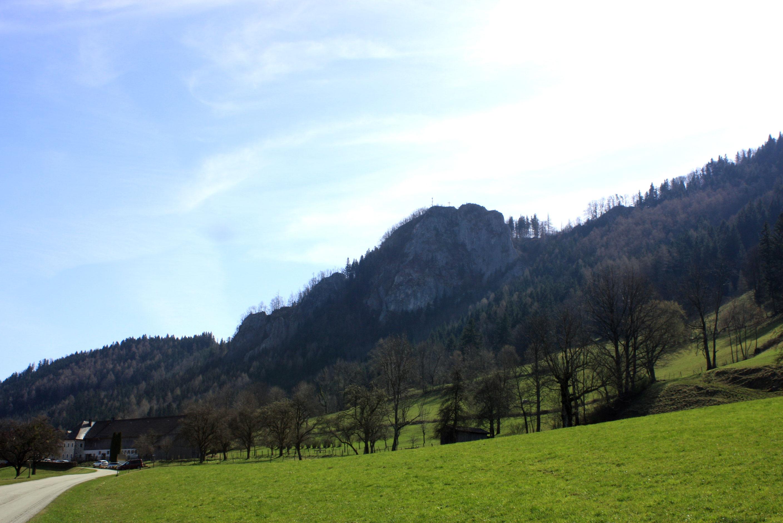 Haselsteinhof
