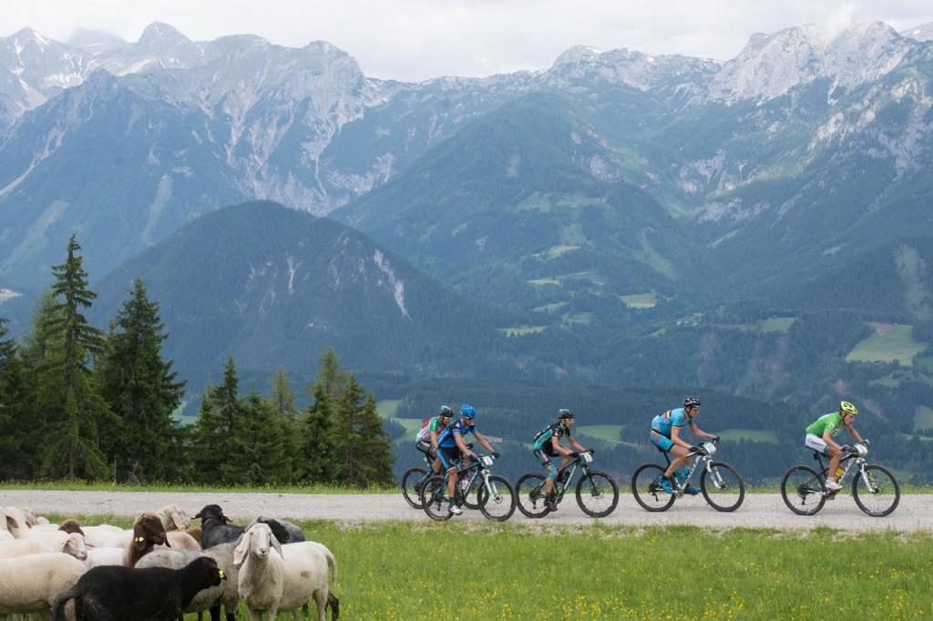 Die Spitzengrupper am Hauser Kaibling (c) Alpentour Trophy - Regina Stanger